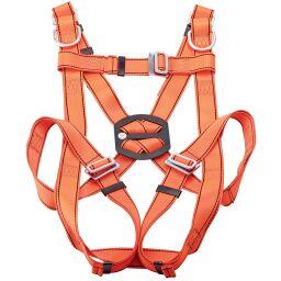 Harness Restraints