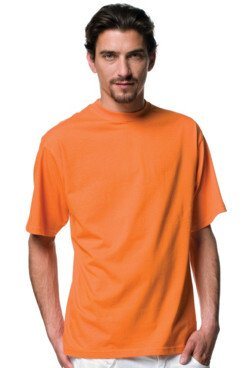 Jerzees ZT180M Jerzees Colours Silver Label T-Shirt ZT180M